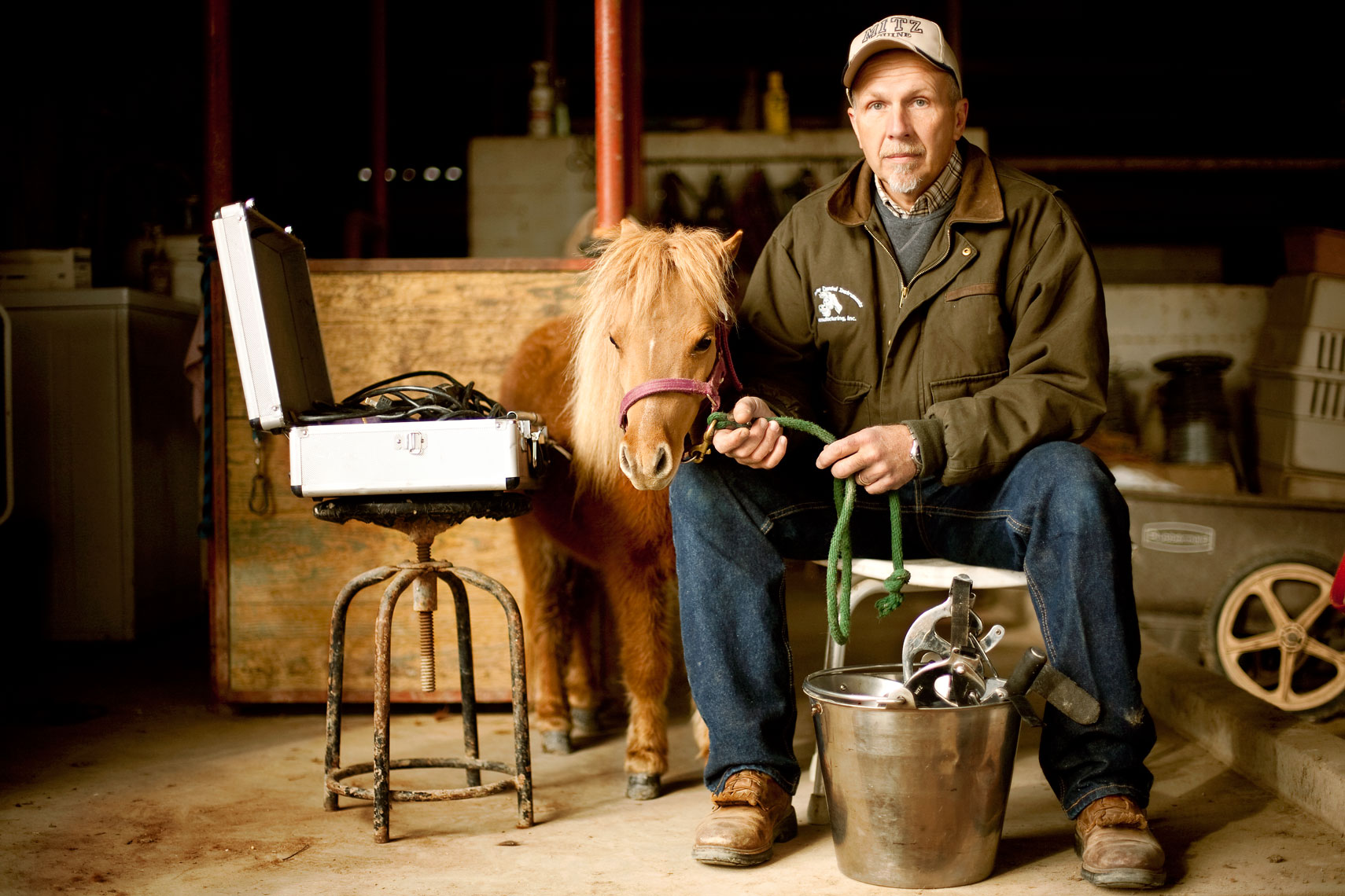 miniature horse dentist sitting with miniature horse for washington dc editorial photography